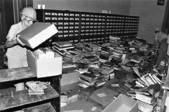 Посвященная пожару в библиотеке Лос-Анджелеса книга стала американским бестселлером