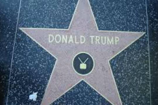 Американец, испортивший звезду Трампа в Голливуде, получил три года условно