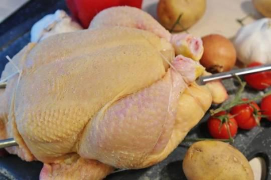 Есть ли антибиотики в цыплятах-бройлерах от марки Домашняя курочка, насколько свежие тушки у Акашево и Петелинки