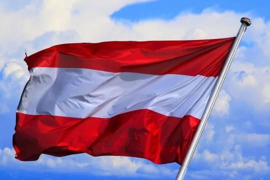 Глава МИД Австрии призвал Евросоюз не рубить сук в вопросе санкций против России