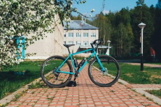 Голландец на велосипеде нелегально проник в Белоруссию за лучшей жизнью