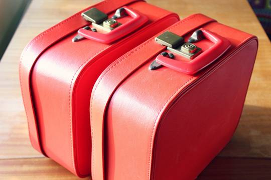 Красноярке довелось закопать чемодан влесу из-за новых правил «Победы»