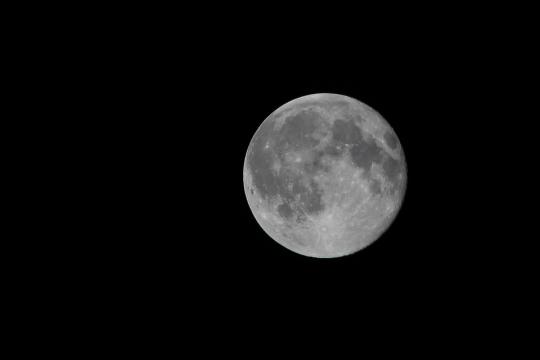 Космонавт Романенко поставил точку в споре о высадке американцев на Луну и объяснил, зачем России нужна лунная база