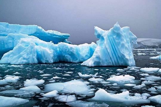 Крупнейший в мире морской заповедник создадут в Антарктике