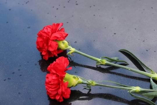 Названа возможная причина смерти актрисы Нины Шацкой
