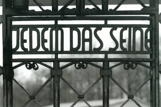 Германский депутат отправится втюрьму зататуировку сконцлагерем