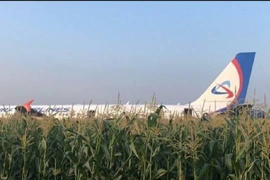 Пилот А321 отказался считать себя героем после экстренной посадки в Подмосковье