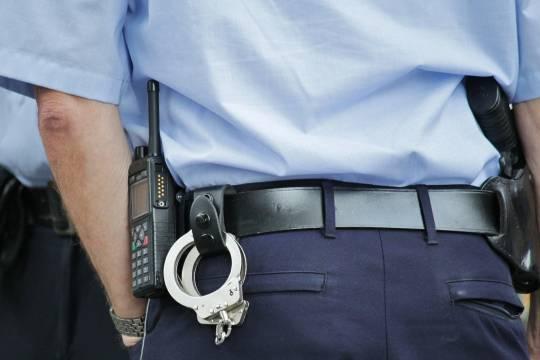 Полиция задержала подозреваемых в краже родственников