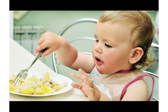 РФ позволила завозить встрану мясо иовощи для детского питания