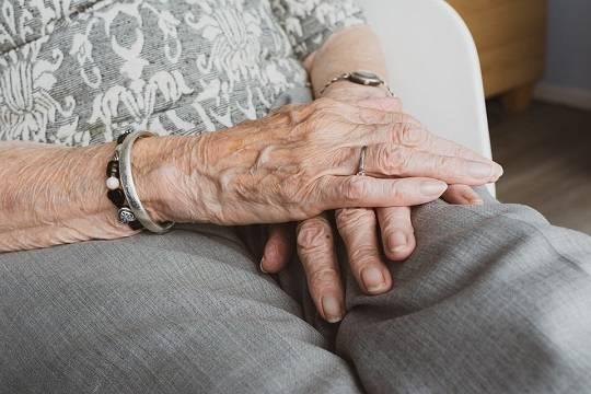 Правительство РФ отклонило законопроект об отмене пенсионной реформы