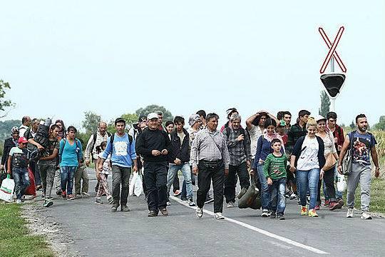 Сократилось число нелегалов переходящих границу между Мексикой и США