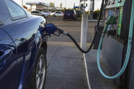 Российские власти начали готовиться к введению временных ограничений на экспорт бензина
