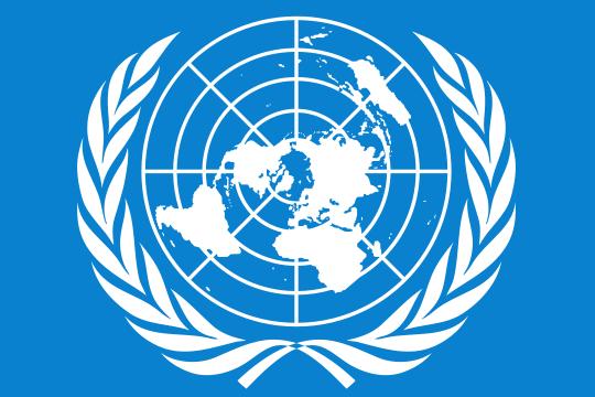 Россия и Китай заблокировали в СБ ООН проект резолюции США по Венесуэле