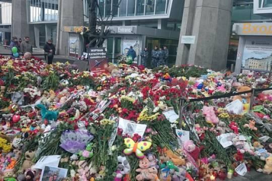 Суд в Египте пересмотрит иск родственника погибшего в катастрофе А321 над Синаем: происшествие могут признать терактом
