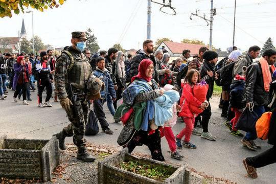 ВГермании ощутимо возросло количество беженцев изТурции