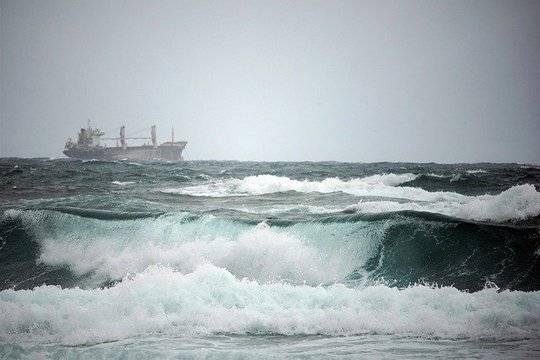 Ущерб от разлива нефти под Новороссийском оценили в 4,5 млрд рублей
