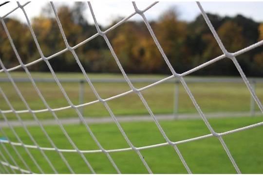 В Британии  футболиста обвинили впоедании пирога вовремя игры