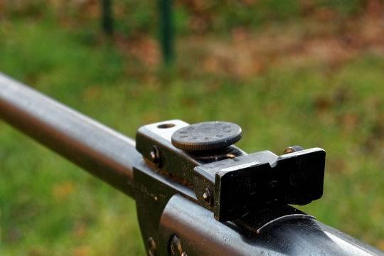 ВКопейске 15-летний ребенок застрелил изружья свою приятельницу