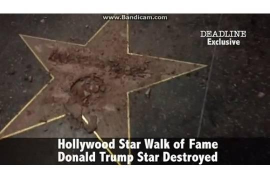 Американец разбил звезду Трампа в Голливуде