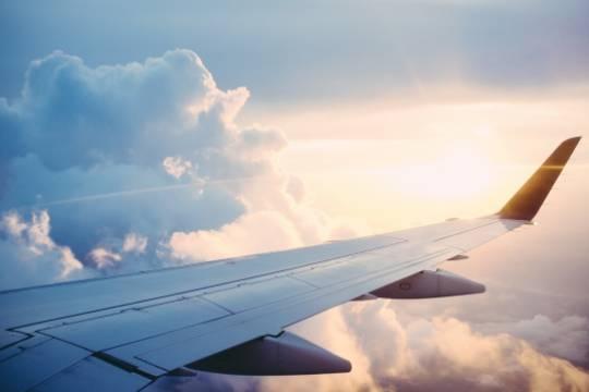 В Новосибирском аэропорту отложили вылет самолета из-за нарушителя порядка