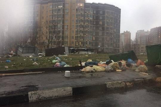 Власти столицы выплатят 1 млн руб. семье погибшей вовремя урагана девушки