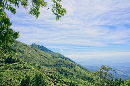 Власти Шри-Ланки ужесточили правила въезда для иностранцев