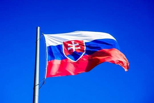 Власти Словакии одобрили использование Спутника V