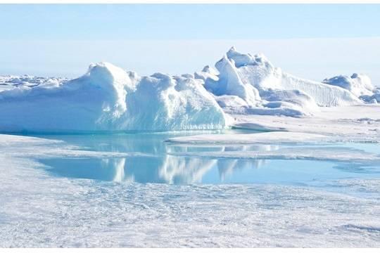 Военные заказали кадры Арктики на70 млн руб. ипопали под суд