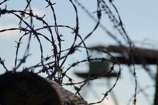 Вызвавший цыганские погромы насильник и убийца найден мертвым в колонии
